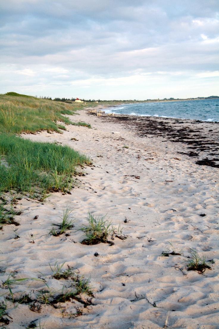 Ristinge Strand - a lovely beach!