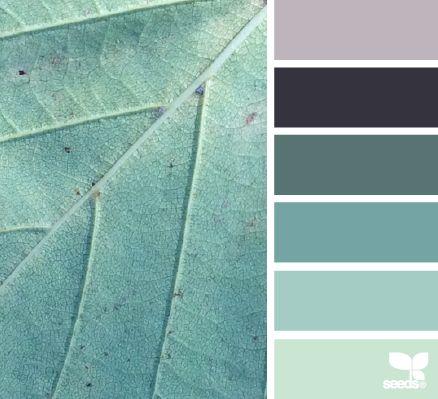 Teal leaf--inspiration color hues for yarn