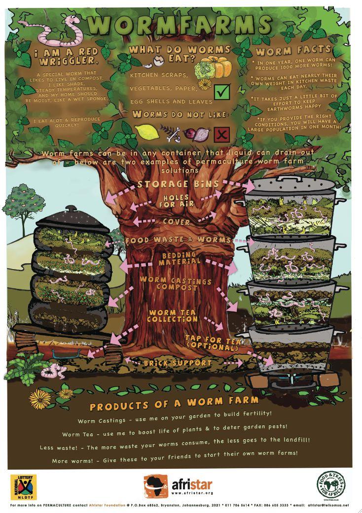 http://permacultureglobal.com/system/post_images/22/original/Wormfarms%20FTFA.jpg?1296661927
