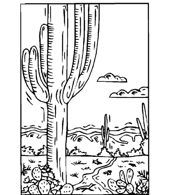 western coloring book pages - photo#32