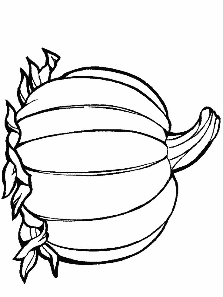 Pumpkin Coloring Template | Colouring-in | Kids Club | Ullswater 'Steamers' | Lake District | UK