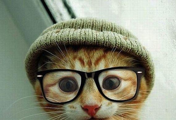 Studious little guy!
