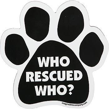 Animal Rescue Groups & their volunteers...