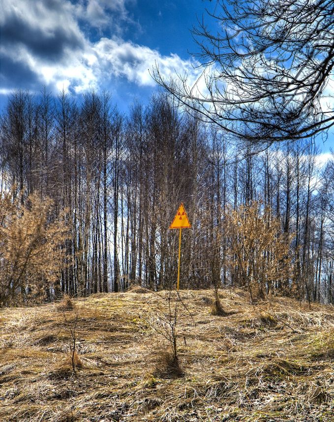 Radioactivity warning sign at east end of Red Forest | The Red Forest is the 4 sq mi area surrounding the Chernobyl Nuclear Power Plant within the Exclusion Zone. The name comes from the colour of the pine trees after they died following the absorption of high levels of radiation from the Chernobyl accident on 26 April 1986. In the post-disaster cleanup operations, the Red Forest was bulldozed and buried. The site of the Red Forest remains one of the most contaminated areas in the world…