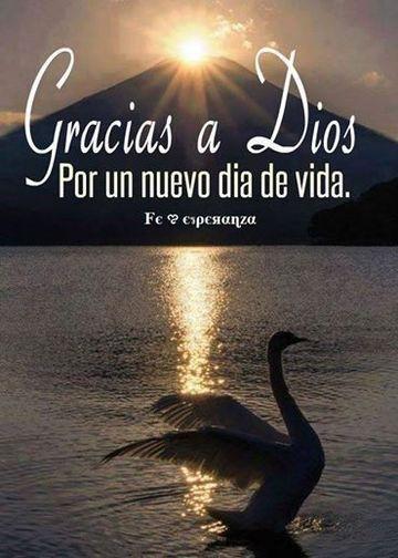 lindas postales de agradecimiento a dios para compartir modelos de