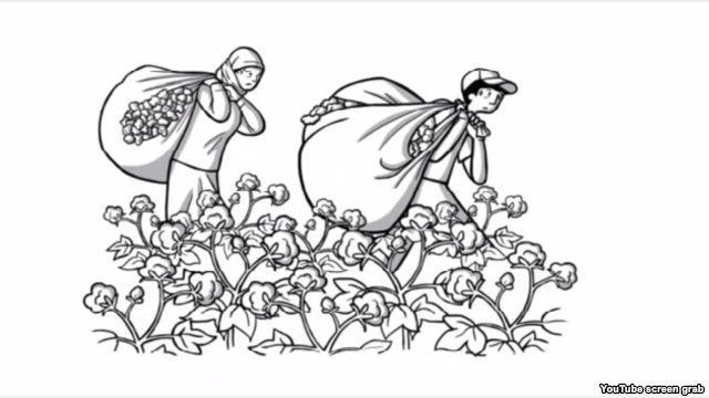 Anti-Slavery International: Ўзбекистон пахта саноатида мажбурий меҳнат (видео)