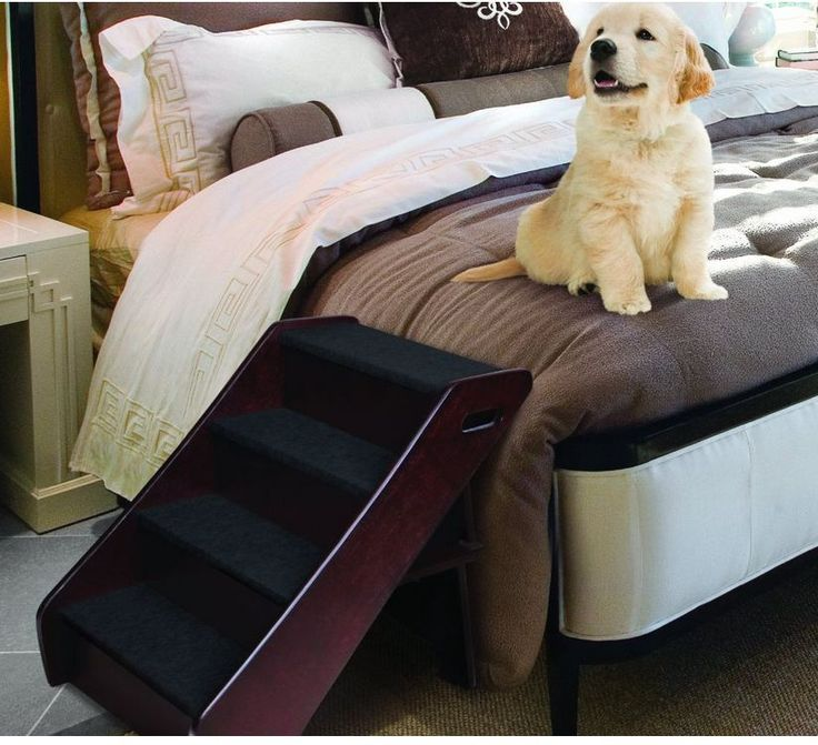 17 Best Ideas About Pet Stairs On Pinterest Dog Stairs