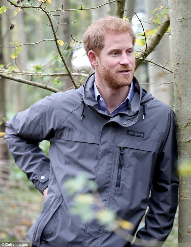 Prince Harry during a visit to Myplace at Brockholes Nature Reserve, a project which aims ...