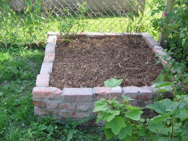 brick raised bed Brick raised garden beds, Raised garden
