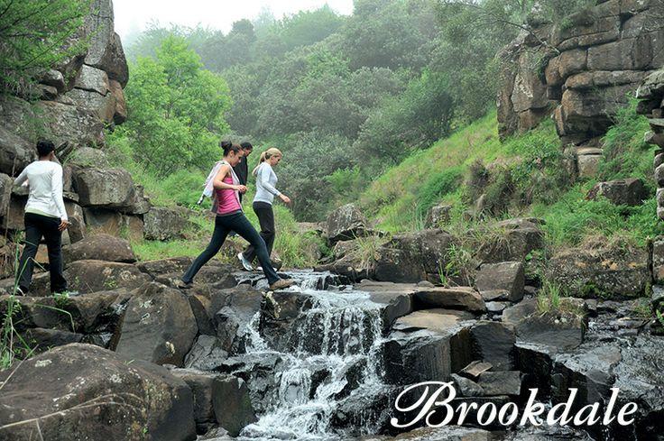 Walking at Brookdale Health Hydro