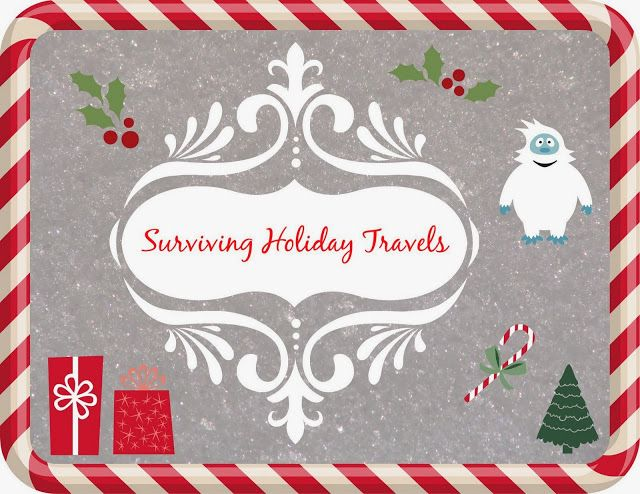 Surviving holiday travels