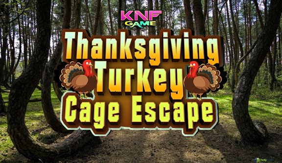 In this game you went to a forest in search of your missing turkey for a thanksgiving gift. But unfortunately you saw your turkey was locked inside a cage. You have to open the cage and help your turkey to escape for that you have to find useful objects and Click on the objects to interact with them and solve simple puzzles to escape the turkey. Good luck and have fun playing Knf escape games and free online point and click games.