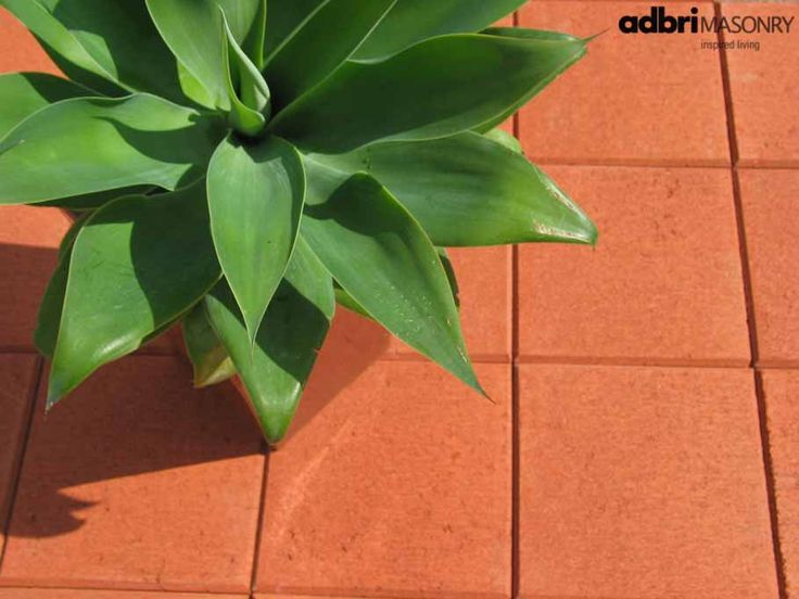 49 best images about adbri pavers on pinterest exposed for Paver installation adelaide