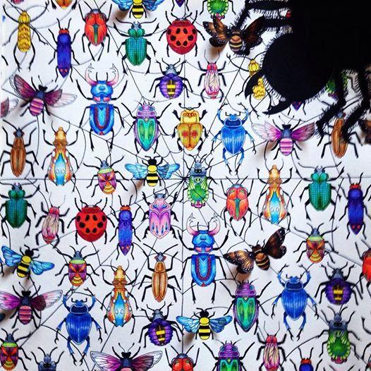 Garden Bugs Coloring Books Colouring Secret Gardens Johanna Basford Beetles