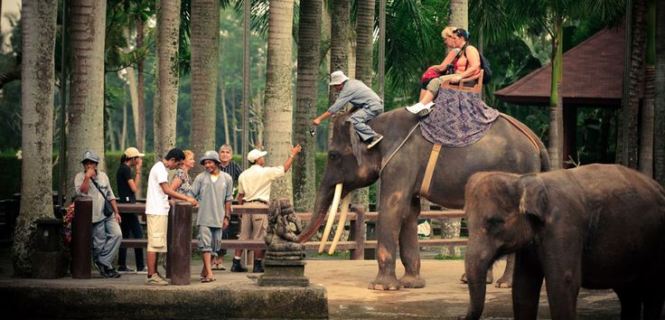 From the back of an elephant, time seems to move slowly, giving you a chance to enjoy the everlasting beauty of this magical island