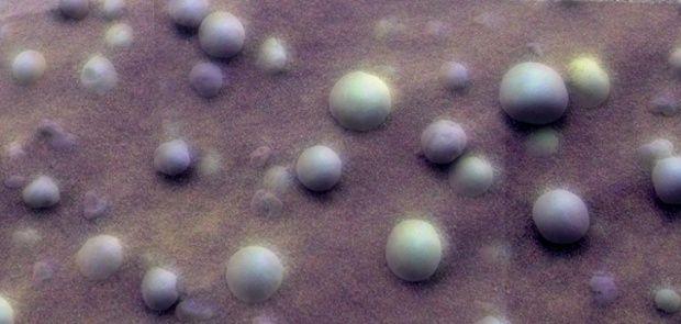 Berries on Mars.