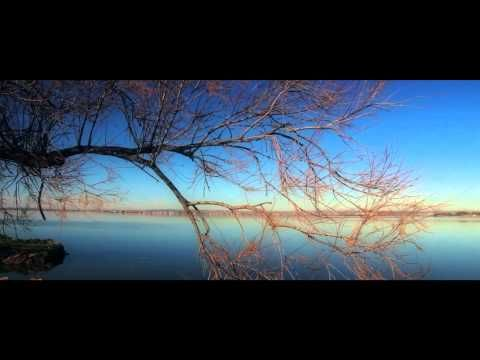 Zen music + Alpha binaural waves [Meditation & Relaxation]
