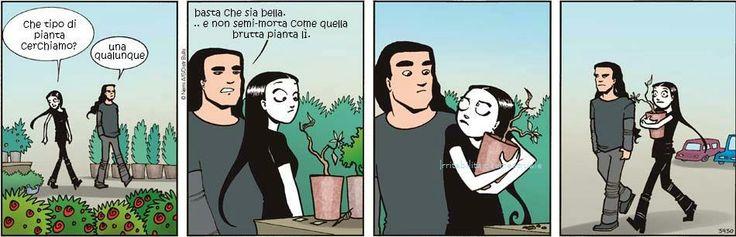 Nemi ~ Dead plant :3