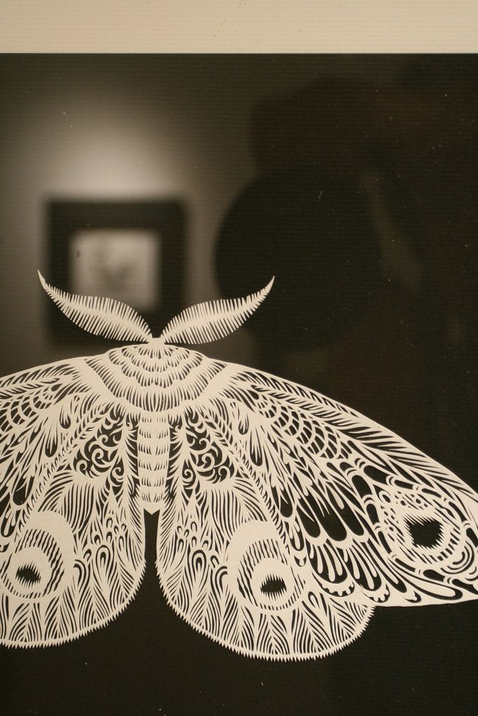 hand cut paper artwork【moth】OK, moth, don't eat my clothes, but if you are a papercut only, can you be in my home! SilhouetteCindisays. . . More