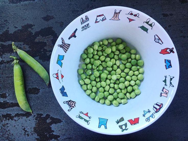 Premiers petits pois de notre petit potager bio ! Un délice (les escargots et limaces ont aussi apprécié... ) #pic #picoftheday #potager #permaculture #igersfrance #blogger #family #bio #biofood #recette #food #veganfood #veganrecipes #vegan #vegetarian #vegetarianfood #mum #mumlife