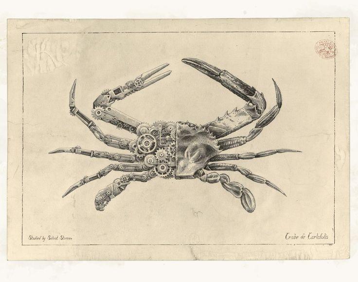Ilustrador francês transforma crustáceos em criaturas mecânicas usando penas Rotring | DesignFaves