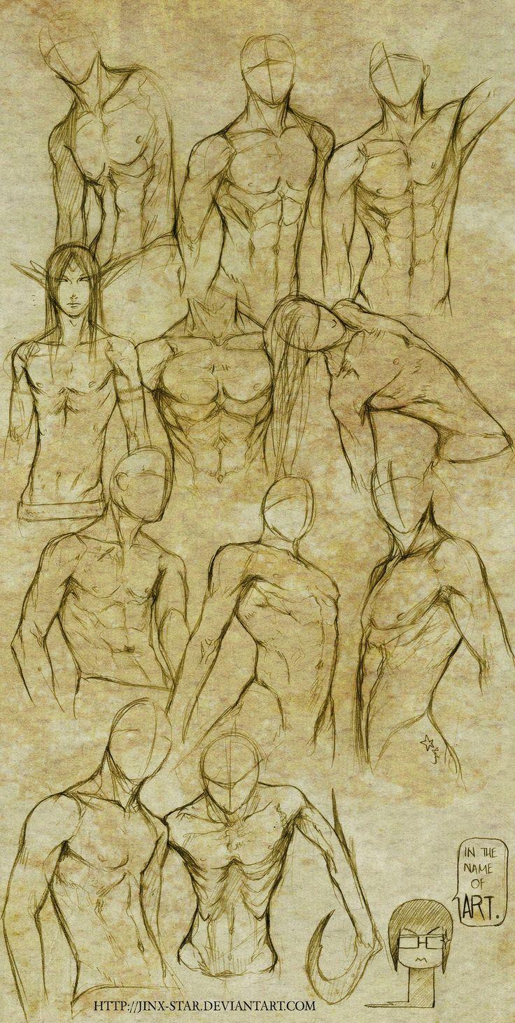 Male body study by jinx-star on Deviant Art