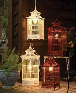 Beautiful bird cage lights. Husband must find out how to do this because I'm scared of electricity.