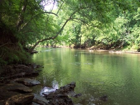 Etowah River, Bartow County, Georgia. So close to home, yet have never been.