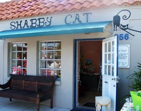 Shabby Cat is an upscale resale shop and adoption center, and all proceeds benefit Brigid's Crossing Holistic Cat Sanctuary.