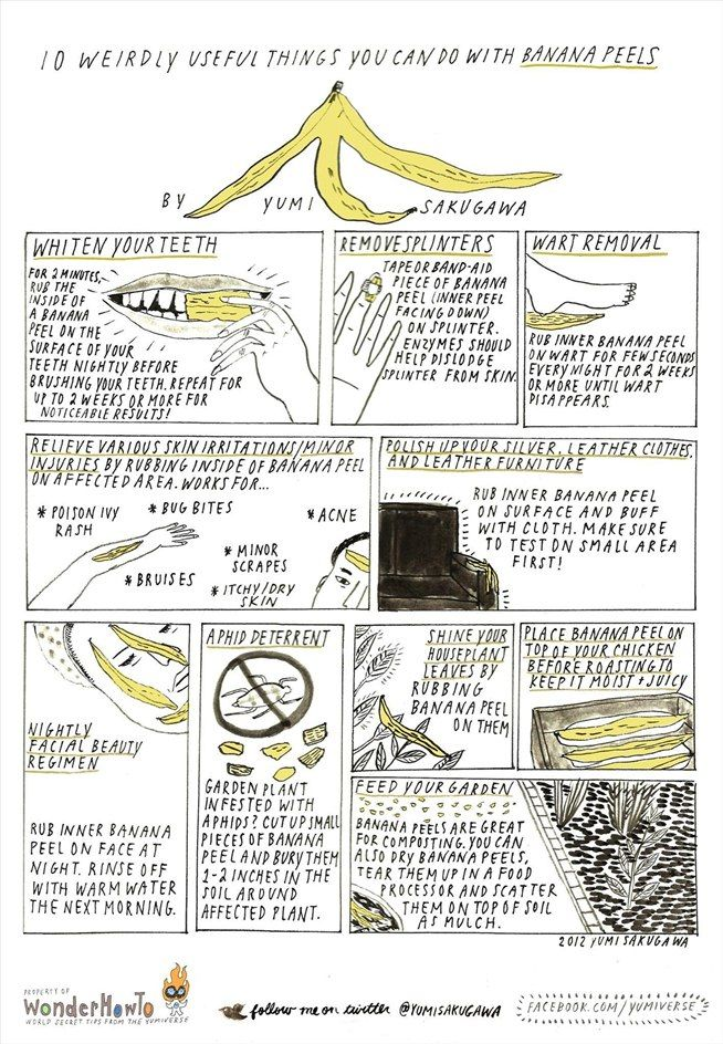 10 Weirdly Useful Things You Can Do with Banana Peels « The Secret Yumiverse