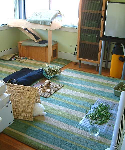 how to make a room on rabbit