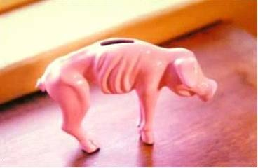 My piggy bank after buying gas today: Gas Price, Truths, Piggy Banks, So True, Funny Stuff, Humor, Smile, Poor Piggy, True Stories