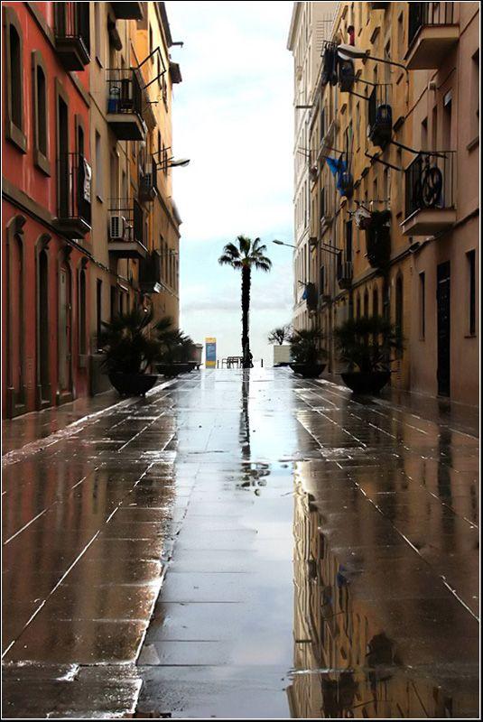 Después de la lluvia...
