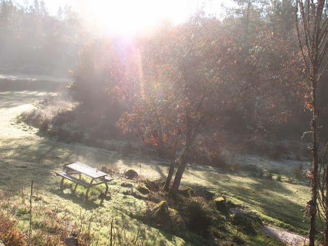 LUIS DESENHA: A geada matinal