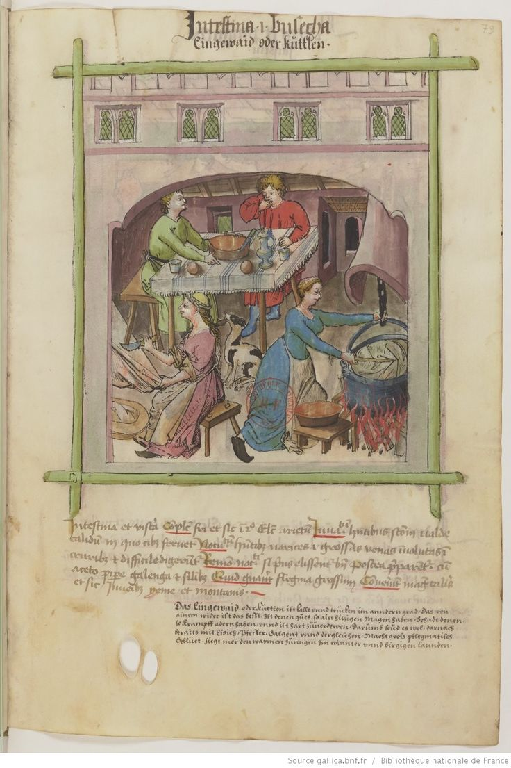 Tacuinum Sanitatis, XVe siècle Paris, BnF, Département des manuscrits, Latin 9333, fol. 79 r