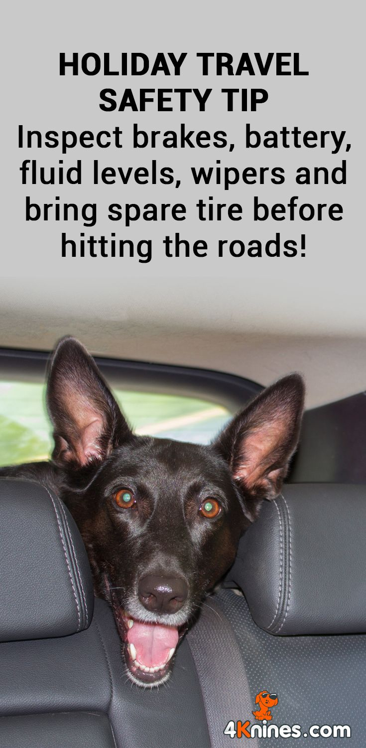 Before Heading On That Road Trip This Thanksgiving Make Sure You Have Had Your Car