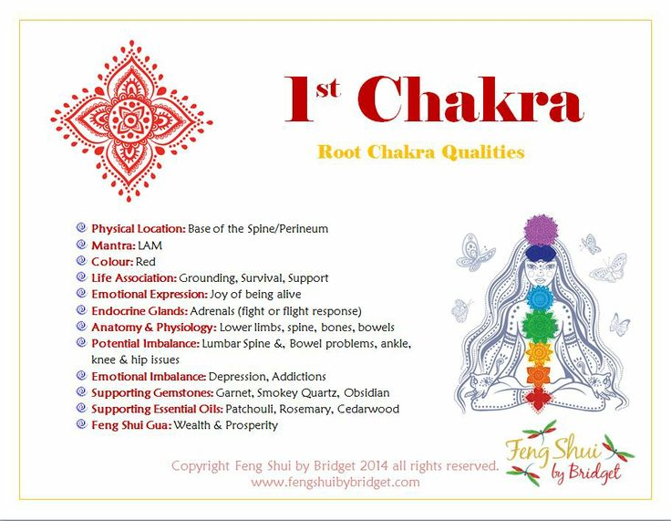 It is through the 1st Chakra or otherwise called the Root Chakra that we integrate Spirit into Matter. This is the center where our Spirit is anchored to the hear and now. It is through here that many forget that they are Spiritual Beings having an Earthly expression and in doing so become closed off to the Divine expression of living in the now.