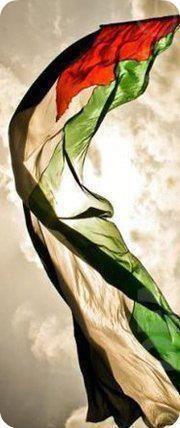 """.فلسطين ★ """" The victory march WILL continue until the palestinian flag flies in Jerusalem and in ALL of Palestine!!!!!!"""" [Yasser Arafat"""