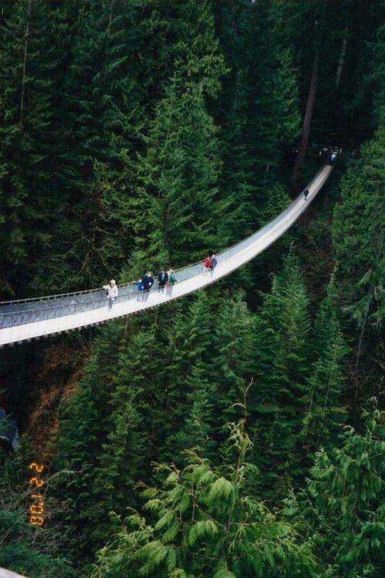 Capilano Suspension Bridge, Vancouver, British Columbia. Hmmmmm.......