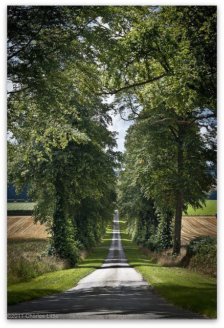 Long Lane near Carlisle, Cumbria