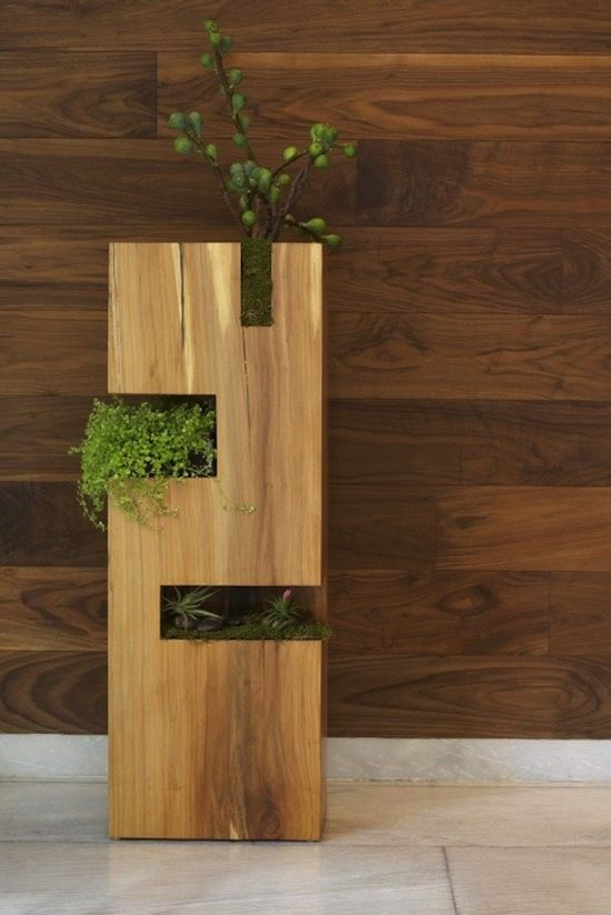 Foyer Planter Box : The wall would be great in a foyer with lot of light