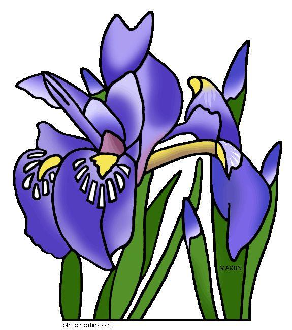 Michigan State Wild Flower   Iris flowers, Flower clipart ...
