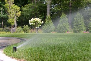 Benefits of a WI-FI Sprinkler Controller for your landscape.