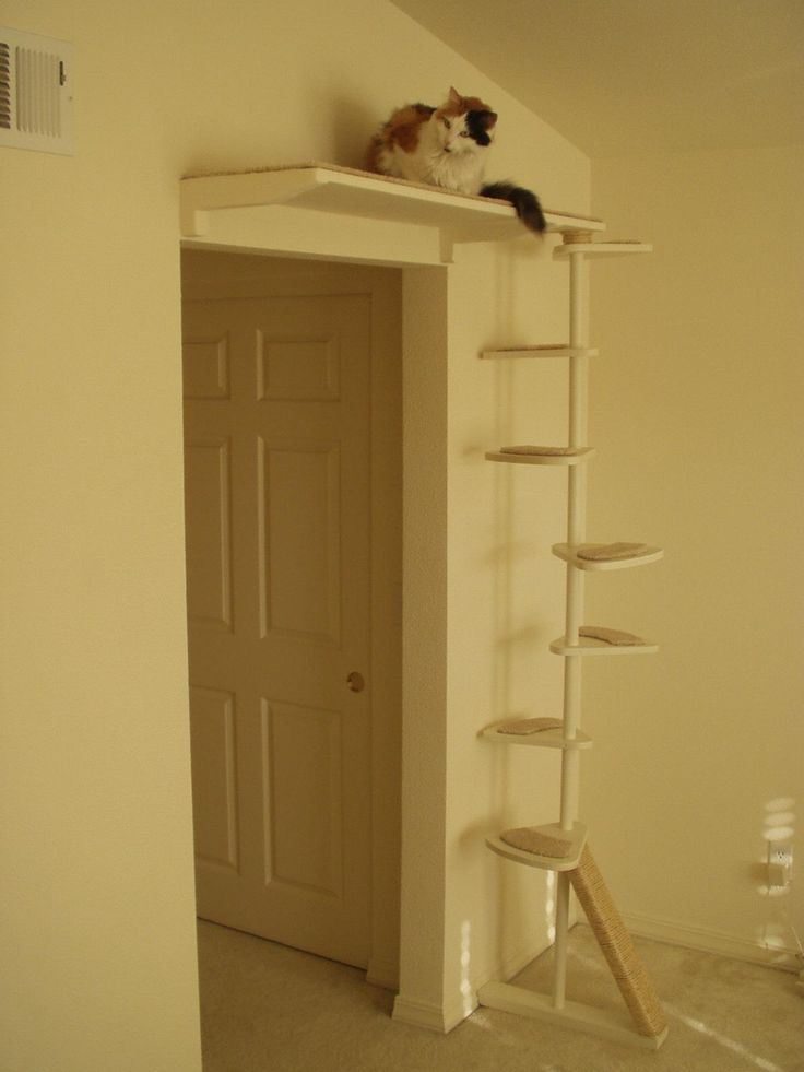 Cat Trees That Look Like Trees For Sale To buy or not to buy a cat #TreePlan - Top 10 at - Catsincare.com!