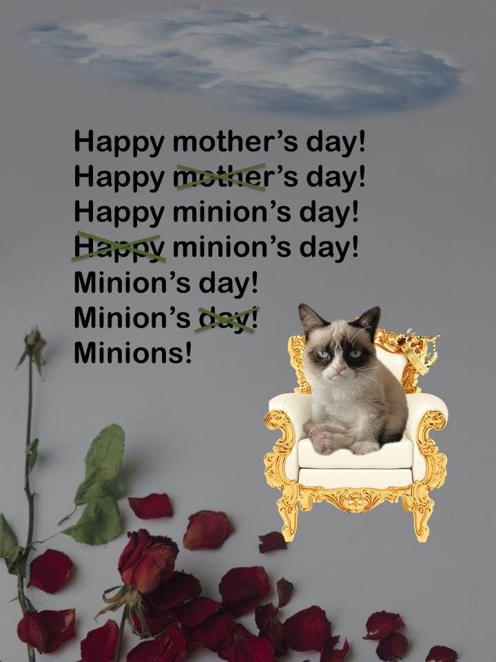 grumpy cat wedding invitations%0A happy mother u    s day grumpy cat style