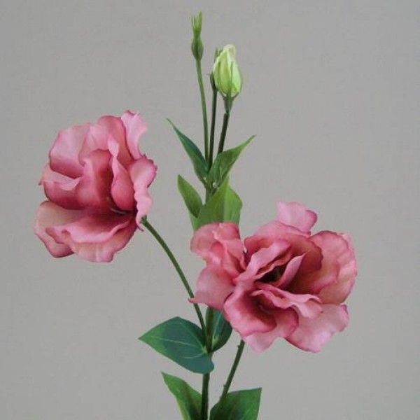 Silk Double Lisianthus Flowers Dusky Pink - L080