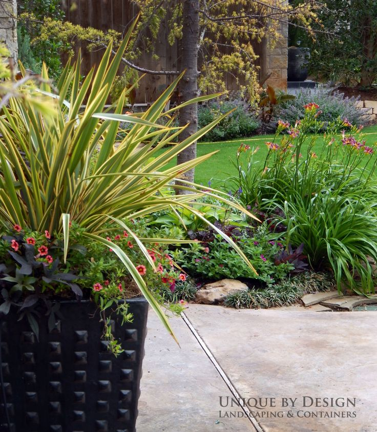 10 Images About Container Gardening Unique By Design On