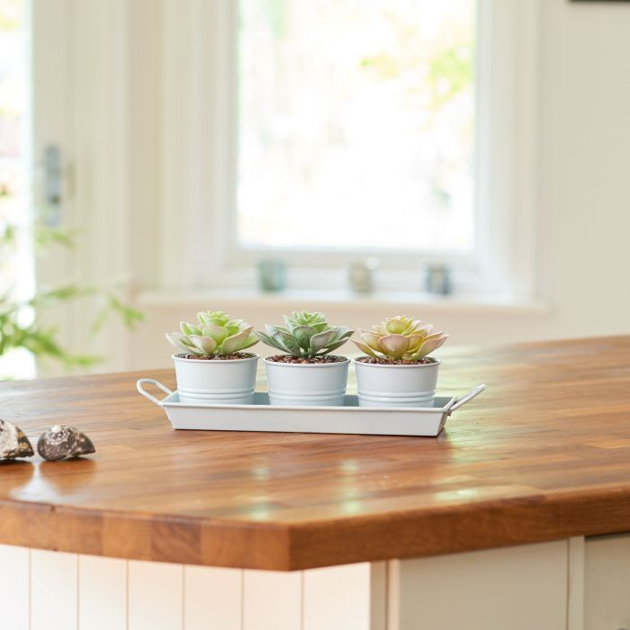 Growing indoor Succulents can be a little tricky, so we have made it plain and simple for you with this lovely little set of three pots in a tray.  So intricately designed, the beauty of this set of three faux Succulents are so on trend right now. Set with small brown stones in pale blue metal pots, this set is such a contemporary look and perfect to suit any decor.