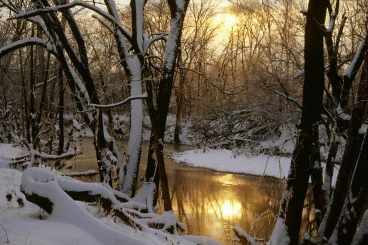Solo perchè esisto sono qui, tra la neve che cade (Issa)