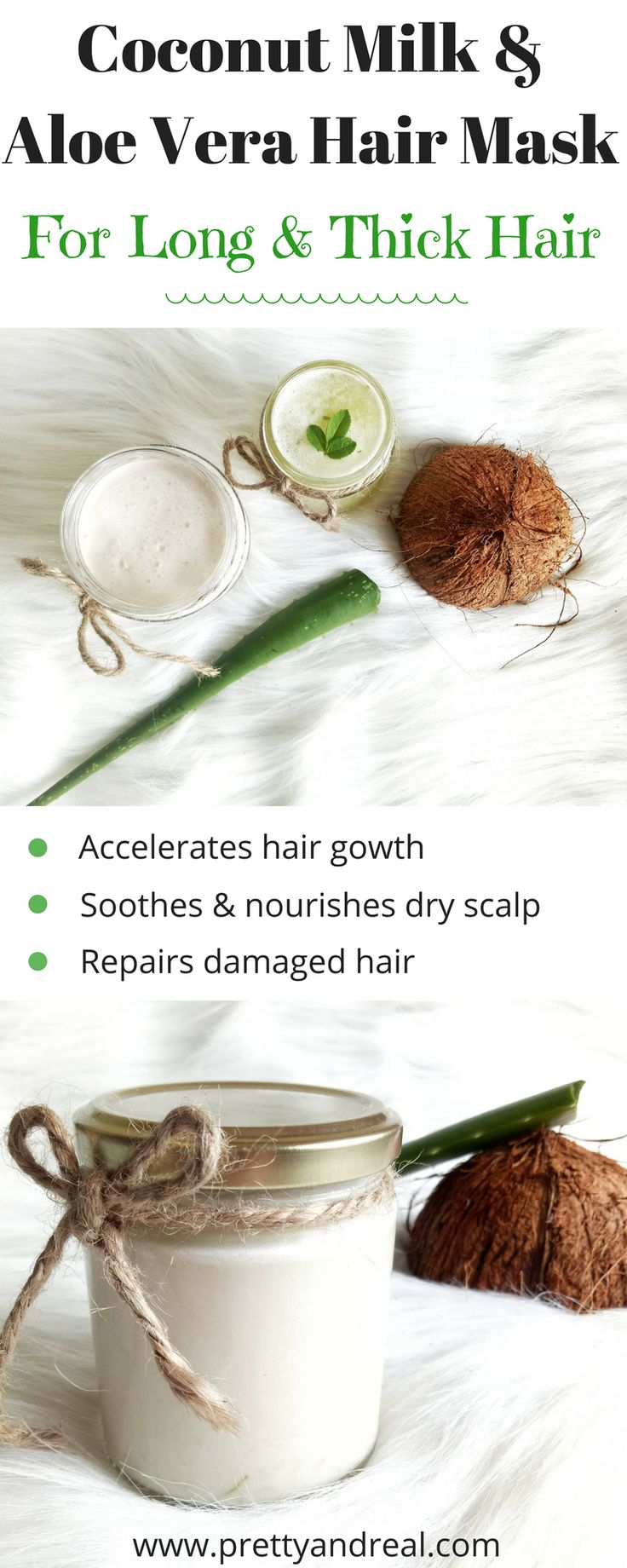 Coconut & Aloe are miraculous ingredients for your hair and skin. This Homemade Coconut Milk & Aloe Vera Hair Mask will give you long & nourished hair! #haircare #hairmask #coconutoil #aloevera
